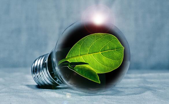 Passer à l'éelctricité vert avec Garraud SN, électricien à Chassenon